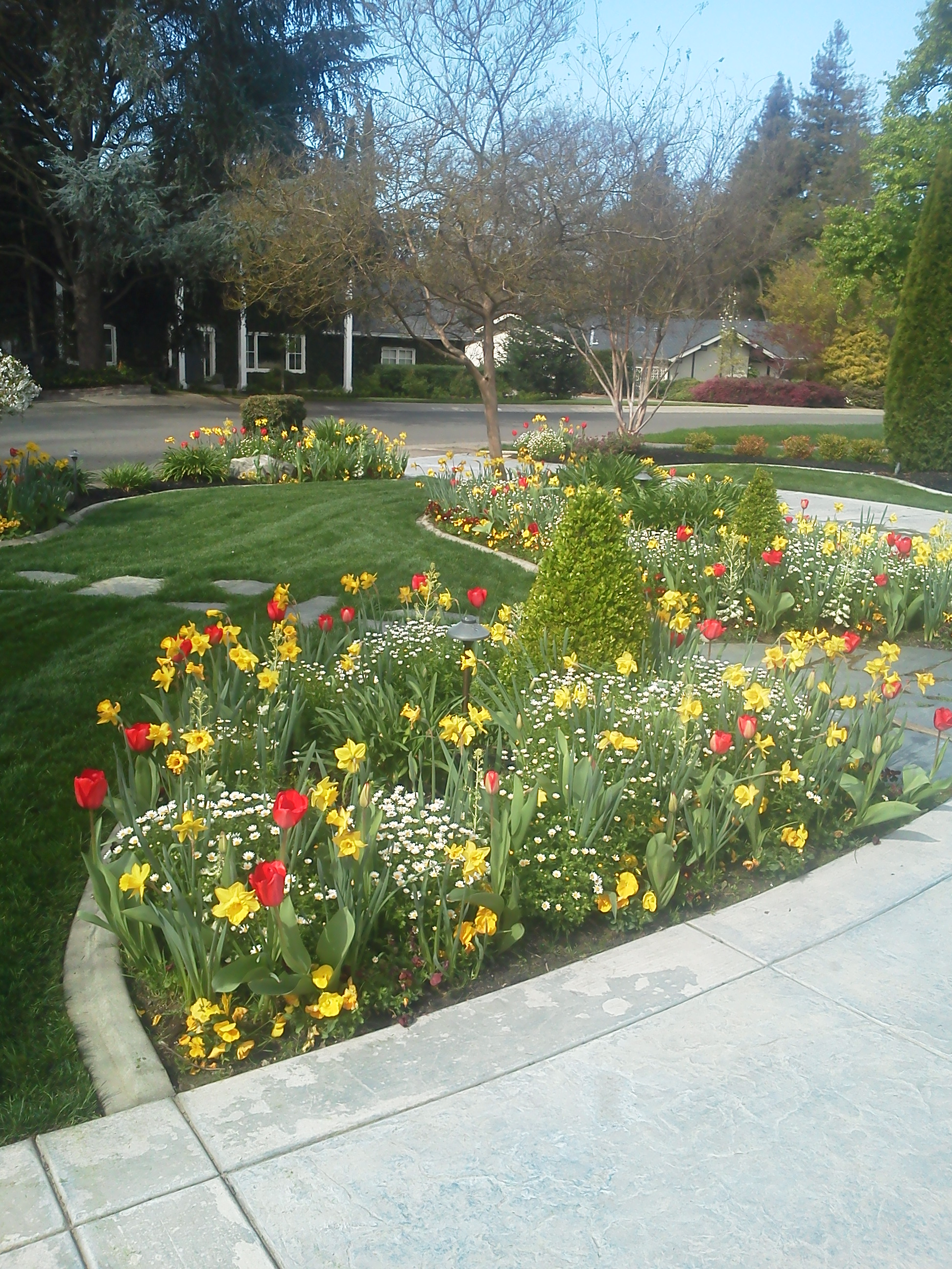 Fall Amp Winter Flower Beds Landscape Makeover Folsom