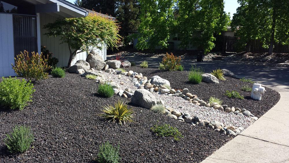 drought tolerant landscaping folsom sacramento. Black Bedroom Furniture Sets. Home Design Ideas